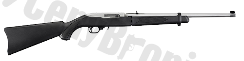 Ruger 10-22 Takedown (11100)