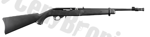 Ruger 10-22 Takedown (11112)