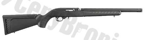 Ruger 10-22 Takedown (21133)